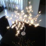 arbol-con-luz